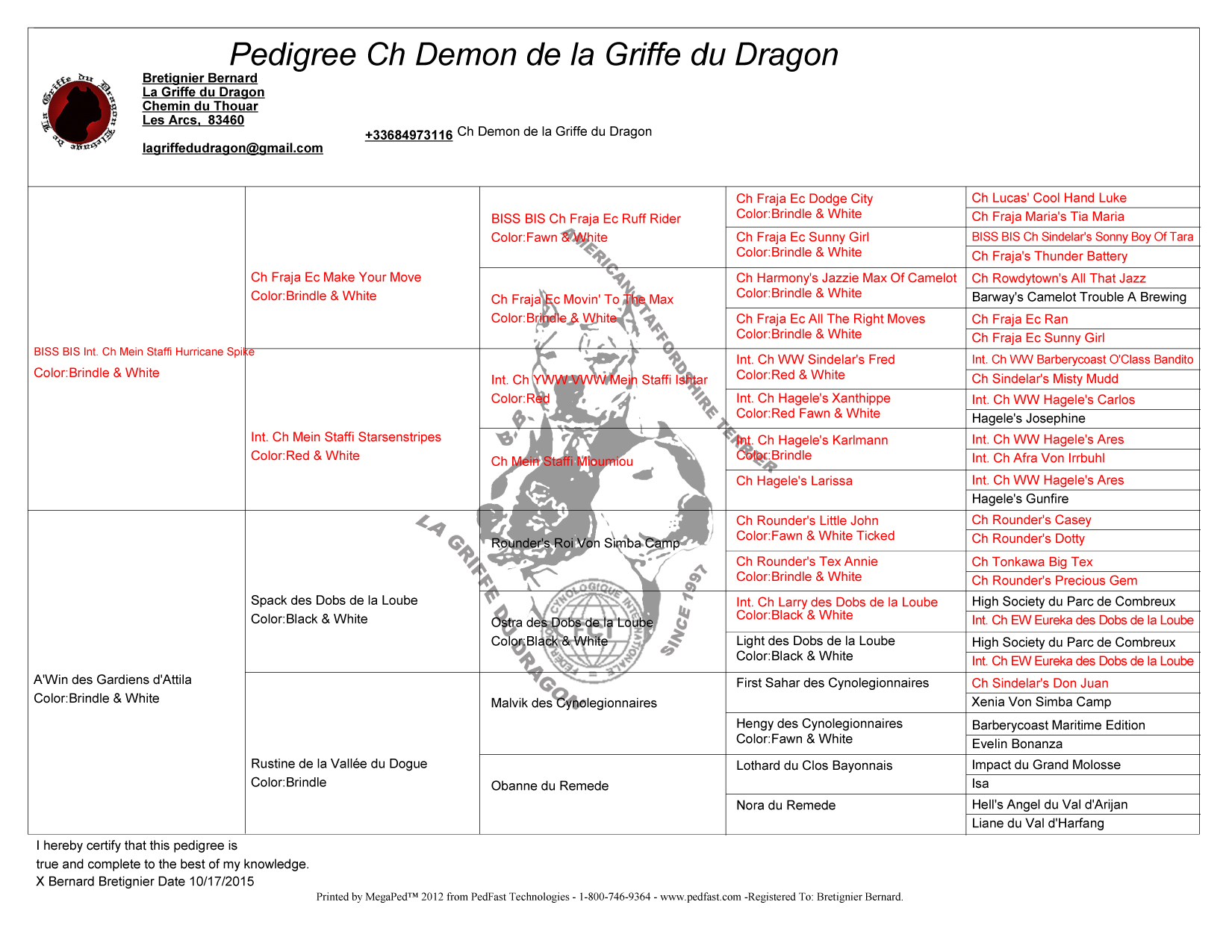 ELEVAGE DE LA GRIFFE DU DRAGON - AMERICAN STAFF - PED DEMON